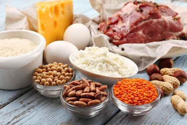 kebutuhan protein tinggi
