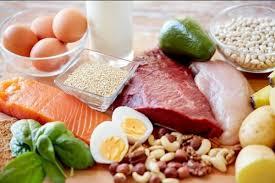 makanan yang mengandung asam amino