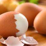 Bolehkah Penderita Wasir Makan Telur?